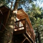 Eshamy Bay Rental Cabins Unit 2 deck
