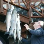 Prince William Sound Fishing at Eshamy Bay Lodge