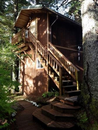 cabin 1.web