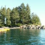 Eshamy Bay Kayaking (1)