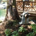 Eshamy Bay Lodge Wildlife viewing