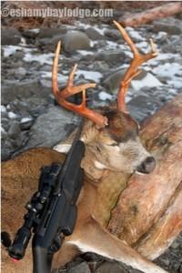 Deer Hunting Alaska's Prince William Sound